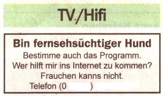 Hund/Internet