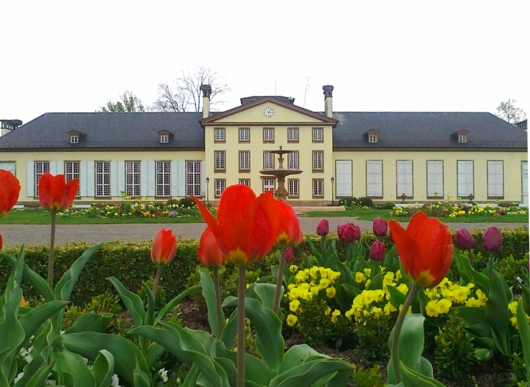 Orangerie Strasbourg1