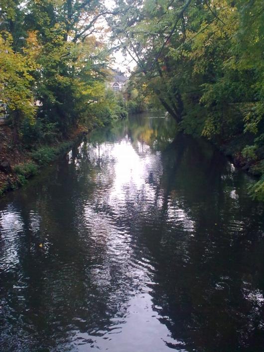 Straßburg Herbst 3