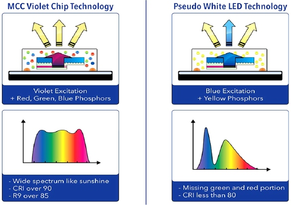 Violet Chip technology