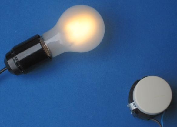 gedimmte EIKO-Filament-Retrofitlampe