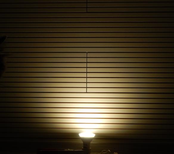 Sebson-GU10-3c-Leuchtbild