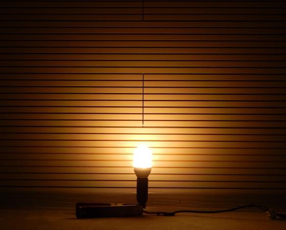 Megaman-E14-Liliput-Leuchtbild