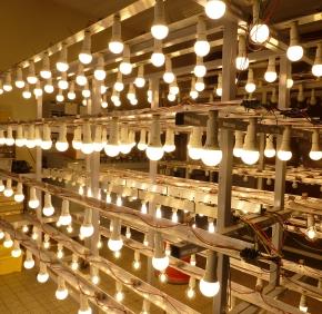 eepliant-led-lampen-dauertest